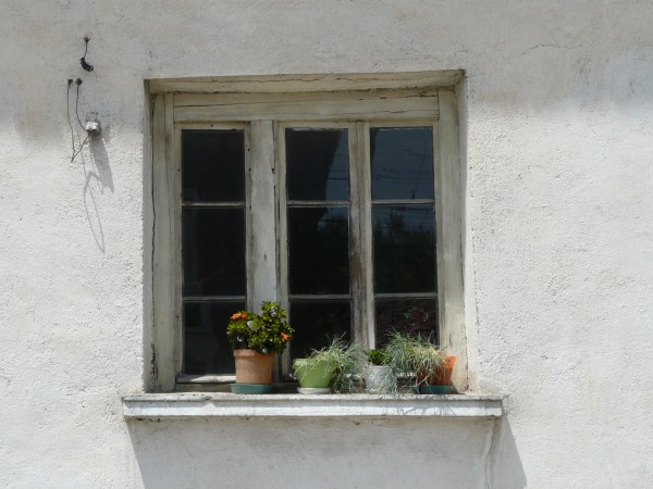 Old window with flowers on the sill