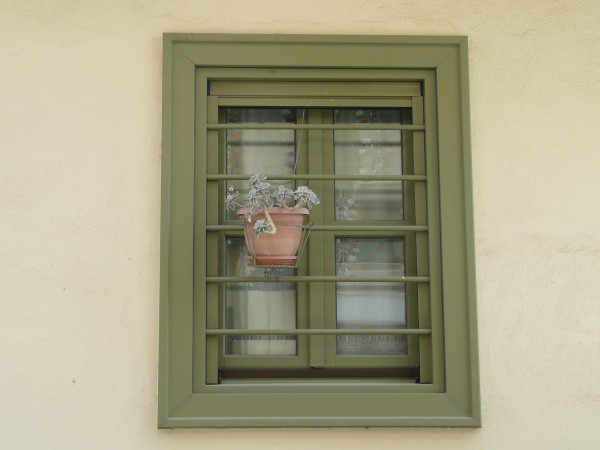 Green window with a pot of flowers