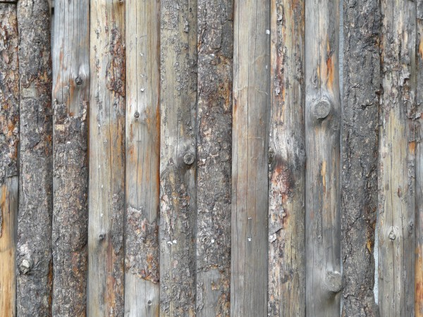 Lumber fence with knots